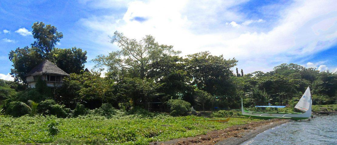 Weekend in Kapusod, Mataas na Kahoy: A Treehouse by Taal Lake