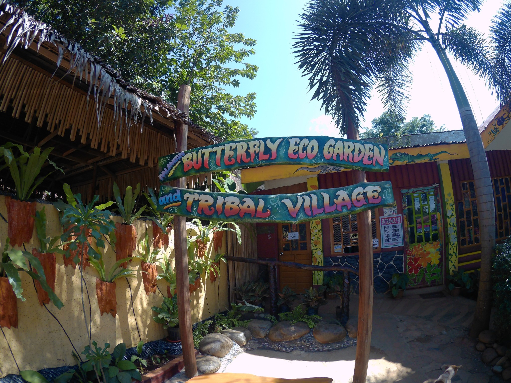 A Brief Tour: Palawan Butterfly Garden and Tribal Village